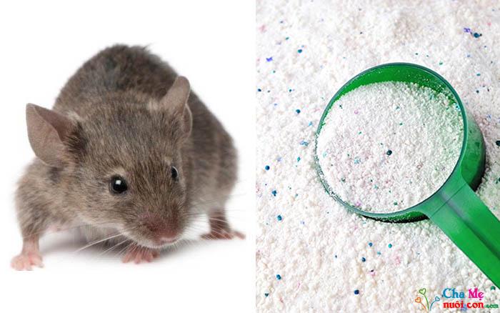 Cách đuổi chuột bằng xà phòng